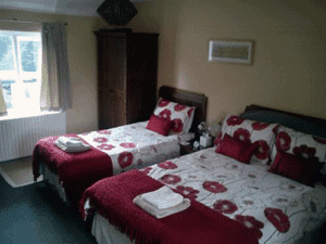Picture of a Twin Bed and single bedded room